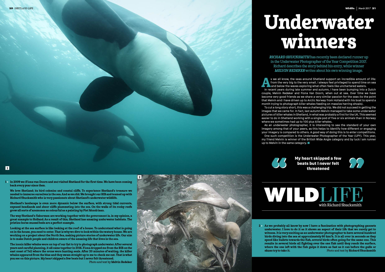 Shetland Life Magazine: Underwater winners