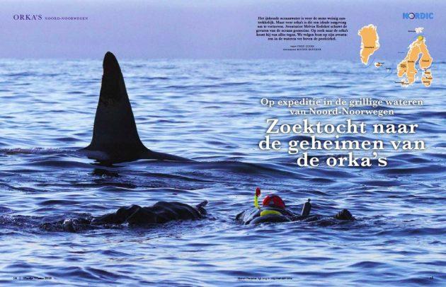 Nordic magazine zoektocht naar de geheimen van de orka's
